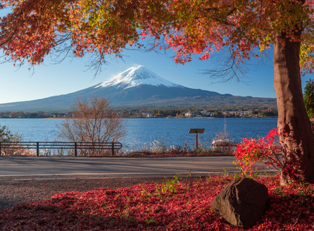 japanese fall foliage: Fuji in Japan