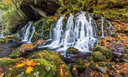 green landscape: beautiful waterfall in forest, autumn landscape Stock Photo