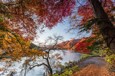 Nature wonder in Minakami Japan Stok Fotoğraf