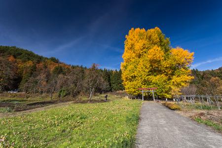 Iiyama city landscape, Nagano, Japan Stok Fotoğraf - 53664034