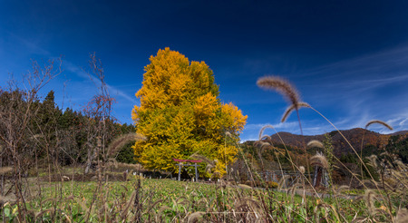 Iiyama landscape, Nagano, Japan Archivio Fotografico