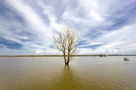 Flooded Evros river - physical border between Greece and Turkey - Vibrant colours photo