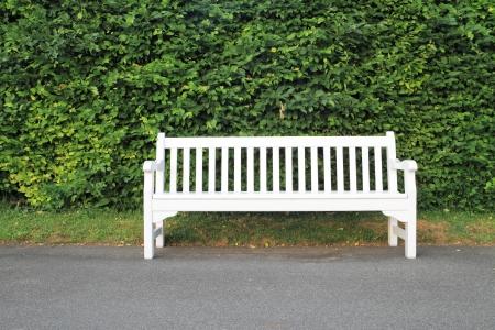 Vider banc en bois blanc dans le parc