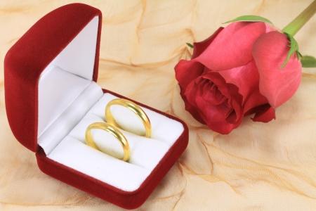 Une paire de bagues de mariage et une rose rouge