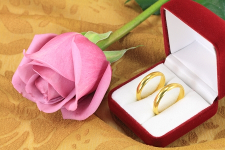 A pair of wedding rings and a pink rose Stock Photo