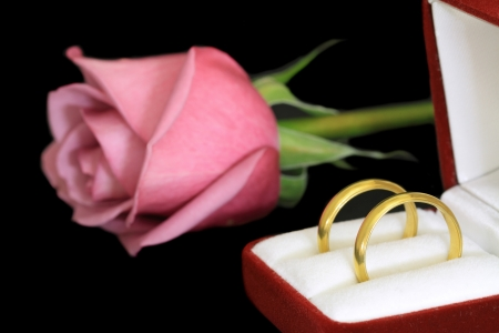 A pair of wedding rings and a pink rose photo