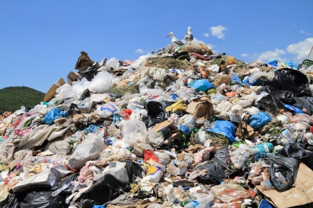 Pile of domestic garbage in landfill. Copyrighted material thoroughly removed photo