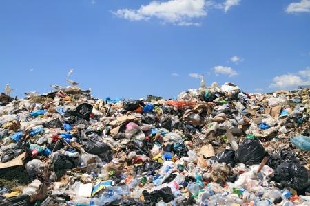 toxic waste: Pila de residuos urbanos en vertedero. Materiales con derechos de autor eliminado completamente