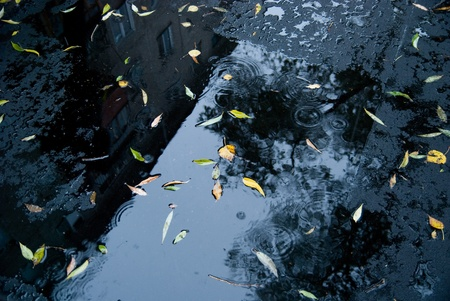 Wet new asphalt in the autumn