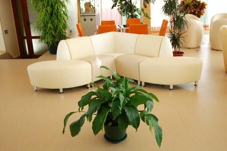 rendering Interior fashionable living-room. Stock Photo - 13387039