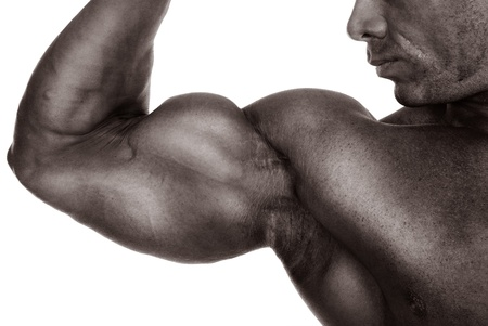 bodybuilder man: Close up of mans arm showing biceps.isolated on a white background