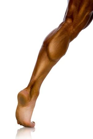 knees bent: studio, la muscolatura della gamba dell'atleta maschio su uno sfondo bianco