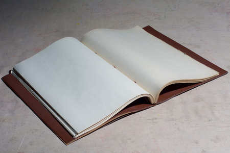 disclosed: Old blank book disclosed. Space for writing text vintage. manuscript