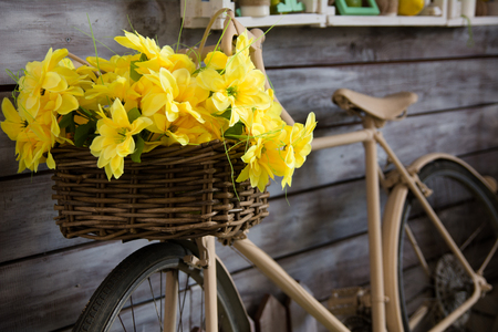 Close-up of yellow flowers in a basket on a bicycle near a wooden wall Stock Photo
