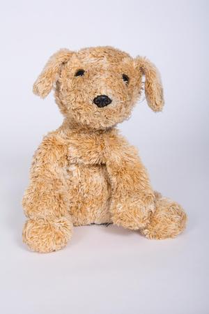 Soft toy dog is isolated on white background.