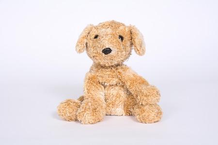 Old soft toy dog isolated on white background. Stock Photo