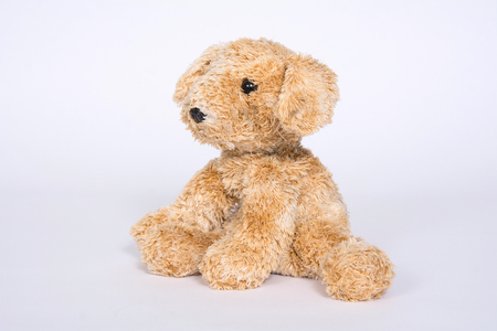 Soft toy doggie isolated on light background.