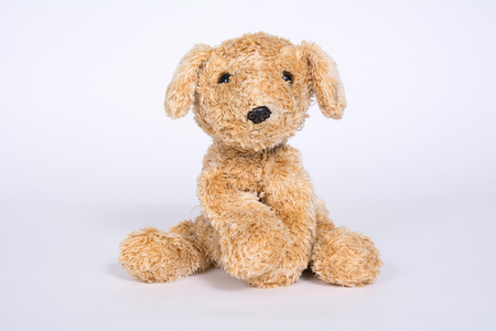 Dog toy isolated on white background. Banque d'images - 118652805