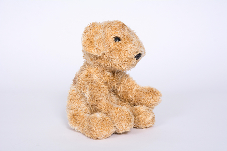 Soft toy doggie isolated on light background. Banque d'images - 118652806