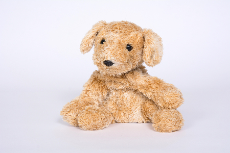 Soft toy dog is isolated on white background. Banque d'images - 118652809
