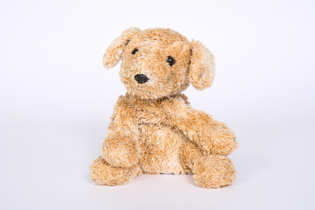 Soft toy dog on a light background.