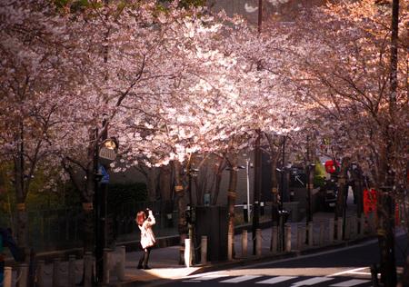Woman to shoot a cherry tree