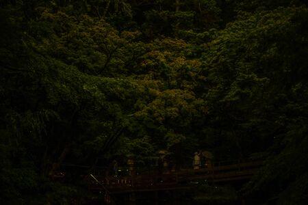 Fireflies of Tsuruoka Hachiman Stock fotó
