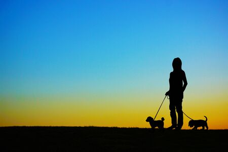 People who have a dog for a walk in the evening of the hill