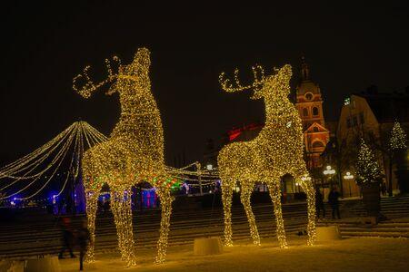 Reindeer of illumination (Stockholm, Sweden)