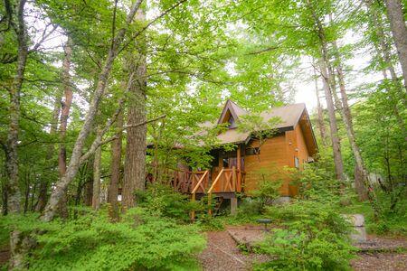 Cottage image nestled in the forest Standard-Bild