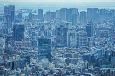 Tokyo skyline seen from the observation deck of the Tokyo Metropolitan Government Building