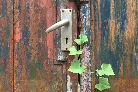 The Rust Door