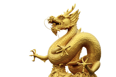 Or dragon chinois sur fond blanc Banque d'images - 35980789