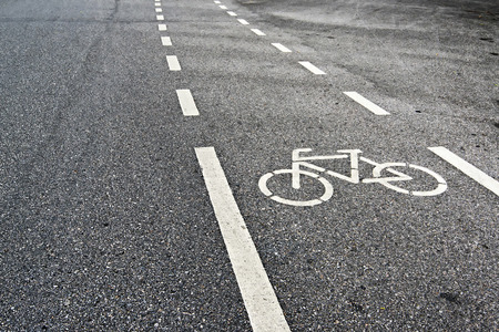 Bicycle Lanes in Park photo