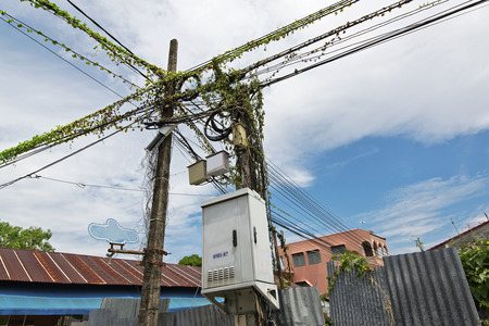 control box: Green ivy on electric control box on iron pole