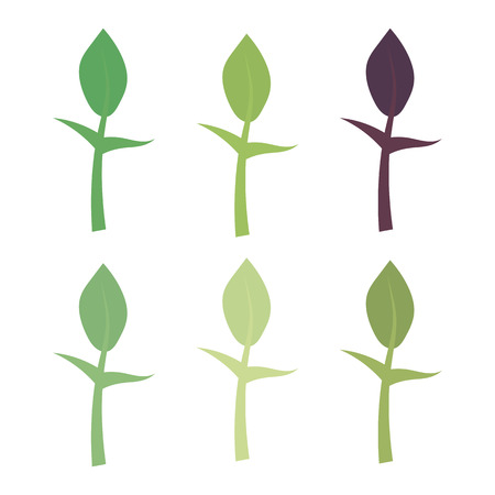 Plant with stem and leaf icon set