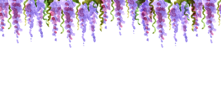 watercolor shades border top dangling loach flowers lavender france romance petals lilac pink framing decoration isolated
