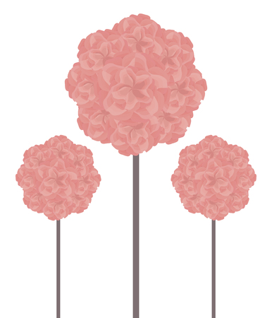 pink three balls of topiary made from beautiful pink flowers on a brown stalk of a high trunk isolated on white background postcard diary page vector illustration. Banque d'images - 103474501