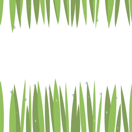 grünes einfaches grünes Gras auf oberer und unterer Karte mit blauen transparenten Wassertropfen lokalisiert auf nahtlosem Hintergrund des weißen Hintergrunds