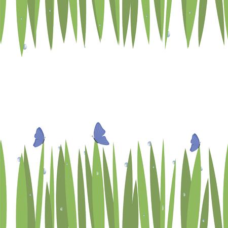 grünes einfaches grünes Gras auf oberer und unterer Karte mit blauen transparenten Wassertropfen mit Schmetterlingsfrischeinsekten lokalisiert auf nahtlosem Hintergrundmuster des weißen Hintergrunds Vektorgrafik