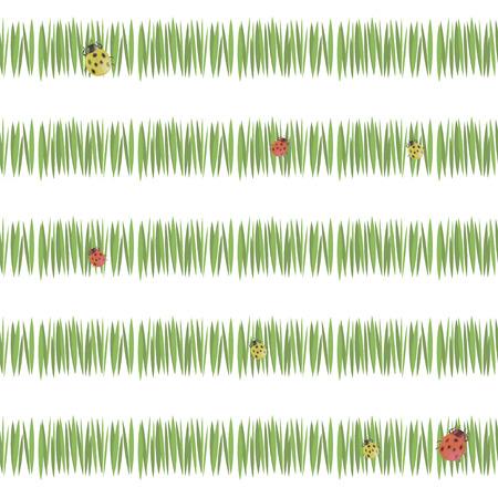 grüne einfache grüne Grasstreifen-Postkartenfrische-Tee-Vegetation mit Marienkäfern rot und gelb lokalisiert auf weißem Hintergrund nahtlos