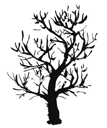 Black vector outline of a deciduous tree without leaves is a simple object that is isolated on a white background.