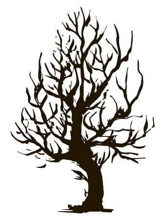 Black vector contour of deciduous twisted stumpy tree without leaves object isolated on white background