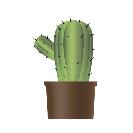 Green vector isolated on white background object cactus in pot drawing.