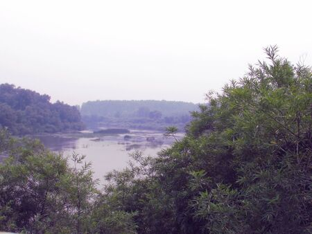 River landscape with shores overgrown with bushes and trees with water, foggy horizon and bright sky.