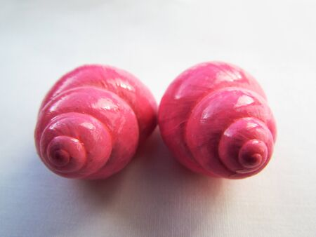 Bright pink positive vibrant twisted glossy shiny snail shells composition lens isolated on a white background.