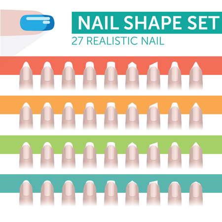 27 realistic nail with french manicure various shapes 矢量图像