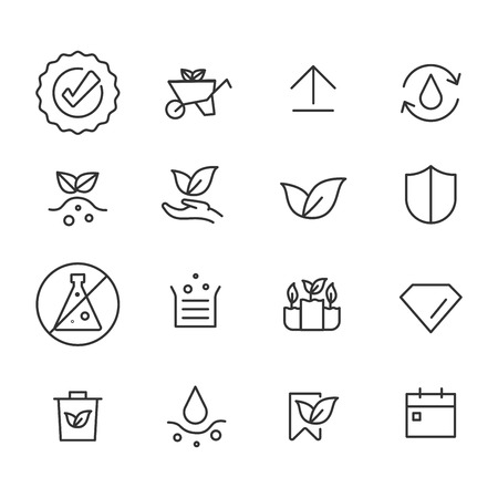 Simple vector set of plants. Related Vector Line Icons.