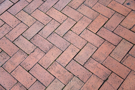 Victorian red brick appearance Garden photo