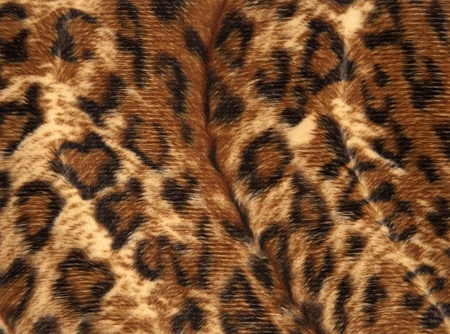 animal abstract patternpanther skin photo